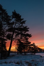 Preview iPhone wallpaper Winter sunset, snow, trees, twilight