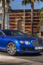 Preview iPhone wallpaper Bentley Continental GT blue car, palm trees