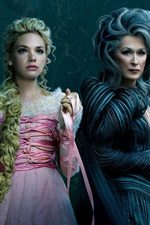 Preview iPhone wallpaper Into the Woods, Meryl Streep, Mackenzie Mauzy
