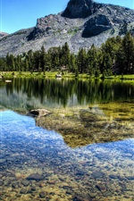 Preview iPhone wallpaper Mountain, forest, river, lake, Yosemite National Park