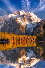 Preview iPhone wallpaper Mountains, snow, forest, trees, lake, water reflection