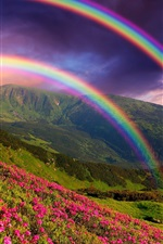 Preview iPhone wallpaper Nature landscape, mountains, flowers, rainbow