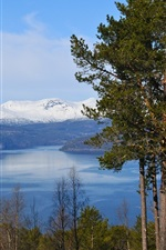 Preview iPhone wallpaper Norway fjord, mountains, trees, blue sky