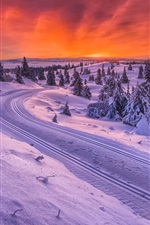 Preview iPhone wallpaper Norway, winter, snow, road, trees, sunset