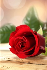 Preview iPhone wallpaper Red rose flower, wooden table, bokeh