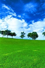 Preview iPhone wallpaper Trees, grass, fields, green