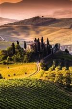 Toscana, Itália, campos, montanhas, árvores, nascer do sol, manhã