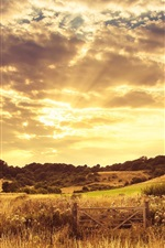 Preview iPhone wallpaper Warm sunset landscape, dusk, clouds, grass, trees, fence