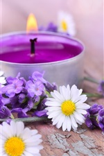 Preview iPhone wallpaper White daisy flowers, lavender, candles