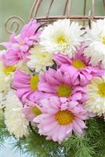White pink flowers, chrysanthemum, basket