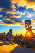 Preview iPhone wallpaper Winter, mountain, snow, trees, sky, clouds, sunset