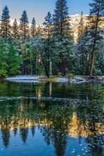 Preview iPhone wallpaper Winter, mountains, trees, lake, Yosemite National Park, USA, California