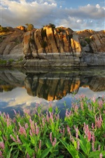 Preview iPhone wallpaper Arizona, Prescott, Watson lake, USA, lake, flowers, stones