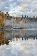 Preview iPhone wallpaper Autumn, lake, forest, trees, morning, mist