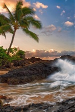 Preview iPhone wallpaper Maui, Hawaii, quiet, ocean, rocks, palm trees, beach