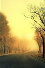 Preview iPhone wallpaper Road, trees, fog, morning