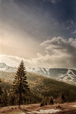 Preview iPhone wallpaper Romania, trees, mountains, snow, sun, clouds, road