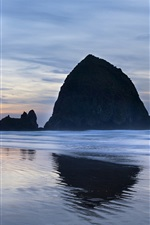 Preview iPhone wallpaper USA, Oregon, ocean, coast, rocks, evening, sky, clouds
