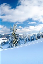 Preview iPhone wallpaper Winter, snow, trees, mountains, sky, clouds