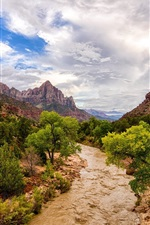 Preview iPhone wallpaper Zion National Park, river, mountains, trees, USA