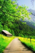Preview iPhone wallpaper Beautiful spring, mountain, house, trees, road, green