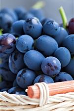 Blue purple grapes, leaves, basket