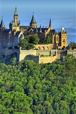 Preview iPhone wallpaper Castle, Hohenzollern, Germany, mountain, forest