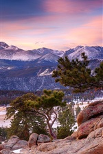 Preview iPhone wallpaper Colorado, Rocky Mountain National Park, mountain, forest, winter, dusk