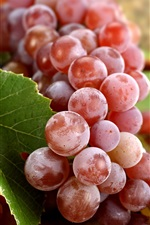 Preview iPhone wallpaper Delicious fruit, red grapes, leaf