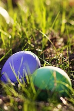 Easter egg in the grass