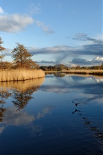 Preview iPhone wallpaper Lake, bird, grass, trees, clouds, autumn