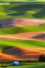 Preview iPhone wallpaper Steptoe Butte State Park, USA, fields, trees, house