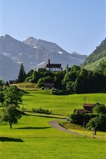 Preview iPhone wallpaper Switzerland, mountains, Alps, valley, grass, road, house, trees