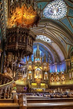 Preview iPhone wallpaper The Notre Dame Basilica, Indoor gorgeous scenery