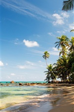 Preview iPhone wallpaper Tropical, beach, sand, palm trees, rocks, sea