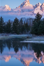 Preview iPhone wallpaper USA, Wyoming, Grand Teton National Park, lake, trees, morning
