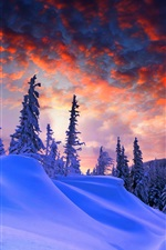 Preview iPhone wallpaper Winter, thick snow, red sky, clouds, trees, dusk