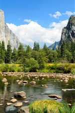 Preview iPhone wallpaper Yosemite National Park, mountains, forest, trees, rocks, river
