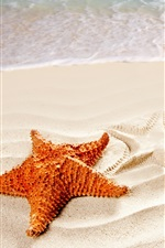 Preview iPhone wallpaper Beach, sand, surf, starfish