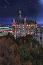 Preview iPhone wallpaper Castle, Germany, night, lights, moon, trees