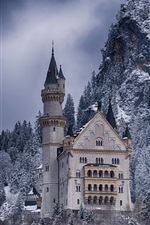 Castle, forest, winter, snow, Germany