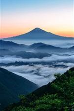Preview iPhone wallpaper Fujiyama, Japan, mountain, fog, clouds, trees, morning