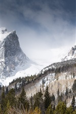 Preview iPhone wallpaper Hallett Peak, mountains, winter, snow, trees