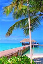Preview iPhone wallpaper Maldives, island, palm trees, bridge, bungalows, sea, ocean