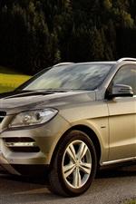 Preview iPhone wallpaper Mercedes-Benz ML 500 SUV car