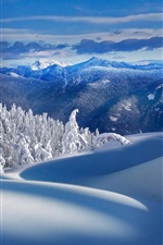 Preview iPhone wallpaper Mountains, trees, snow, winter, nature scenery