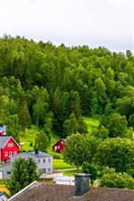 Preview iPhone wallpaper Norway, town, mountains, houses, trees, grass