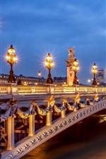 Preview iPhone wallpaper Paris, France, city, evening, lights, Pont Alexandre III, bridge