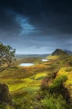 Escócia, região serrana, verão, montes, vale, grama, flores