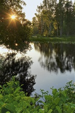 Preview iPhone wallpaper Sweden, lake, forest, trees, sun rays